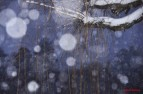 art-winter-fairy
