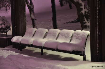 purple-light-on-snow