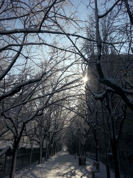 winter-tunel-02